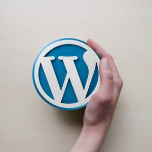 WordPress 4.8 June 2017